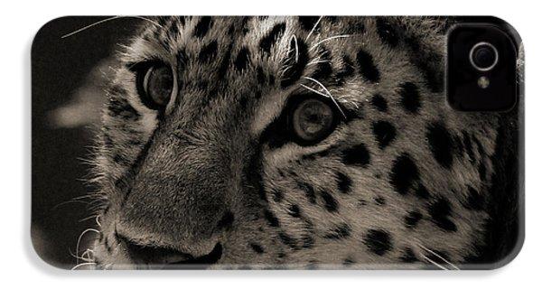 Amur Leopard IPhone 4 / 4s Case by Martin Newman