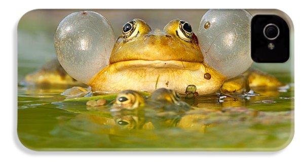A Frog's Life IPhone 4 / 4s Case by Roeselien Raimond