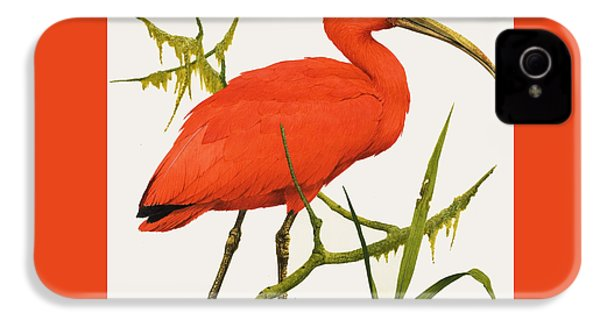 A Scarlet Ibis From South America IPhone 4 / 4s Case by Kenneth Lilly