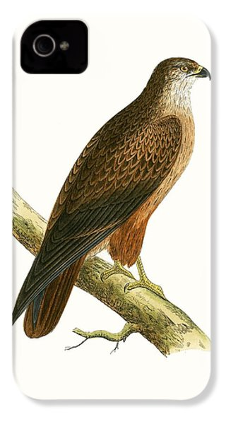 African Buzzard IPhone 4 / 4s Case by English School