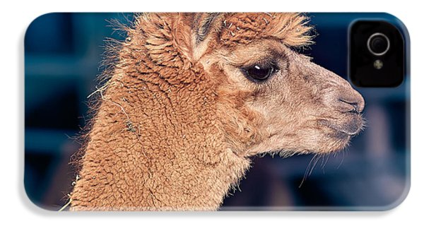Alpaca Wants To Meet You IPhone 4 / 4s Case by TC Morgan