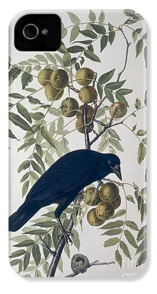 American Crow IPhone 4 / 4s Case by John James Audubon