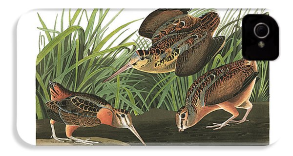 American Woodcock IPhone 4 / 4s Case by John Audubon