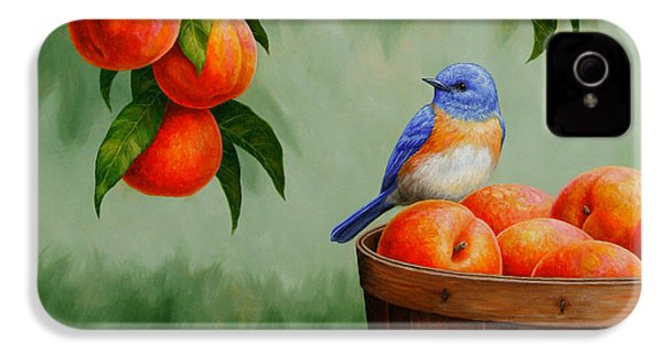Bluebird And Peaches Greeting Card 3 IPhone 4 / 4s Case by Crista Forest