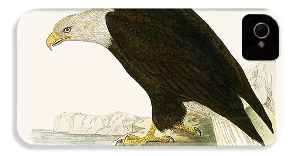 Bald Eagle IPhone 4 / 4s Case by English School