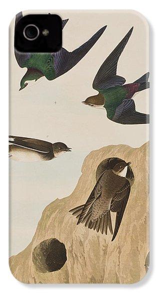 Bank Swallows IPhone 4 / 4s Case by John James Audubon