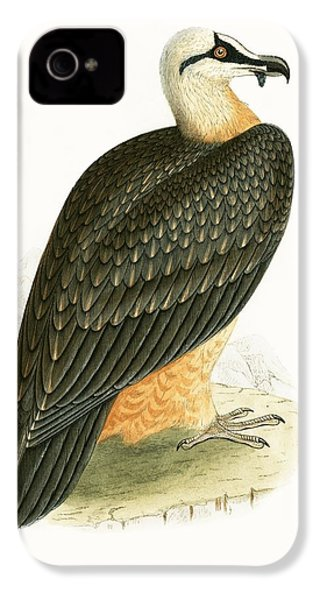 Bearded Vulture IPhone 4 / 4s Case by English School