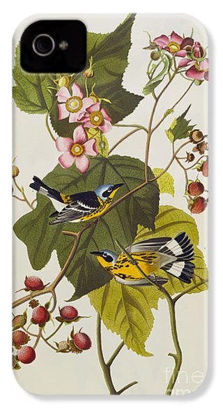 Black And Yellow Warbler IPhone 4 / 4s Case by John James Audubon