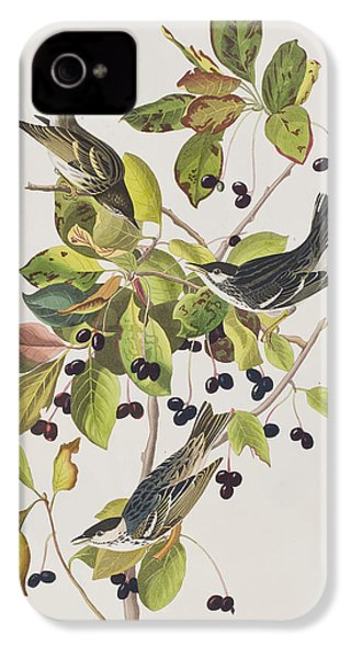 Black Poll Warbler IPhone 4 / 4s Case by John James Audubon