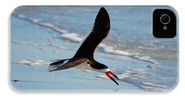 Black Skimmer IPhone 4 / 4s Case by Barbara Bowen