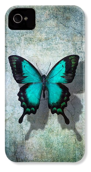 Blue Butterfly Resting IPhone 4 / 4s Case by Garry Gay