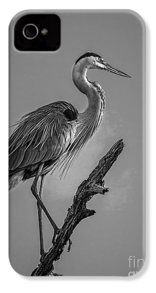 Blue In Black-bw IPhone 4 / 4s Case by Marvin Spates