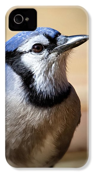 Blue Jay Portrait IPhone 4 / 4s Case by Al  Mueller