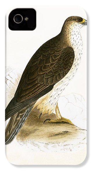 Bonelli's Eagle IPhone 4 / 4s Case by English School