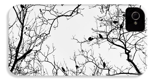 Branches And Birds IPhone 4 / 4s Case by Sandy Taylor
