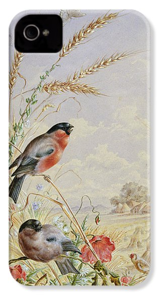 Bullfinches In A Harvest Field IPhone 4 / 4s Case by Harry Bright