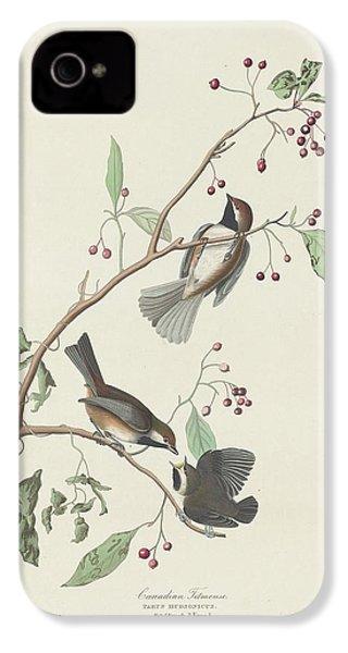 Canadian Titmouse IPhone 4 / 4s Case by John James Audubon