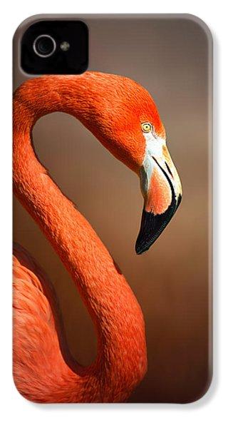 Caribean Flamingo Portrait IPhone 4 / 4s Case by Johan Swanepoel