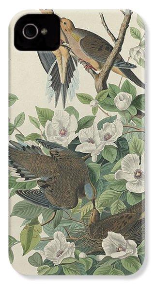 Carolina Pigeon Or Turtle Dove IPhone 4 / 4s Case by John James Audubon