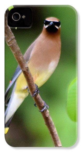 Cedar Wax Wing 2 IPhone 4 / 4s Case by Sheri McLeroy
