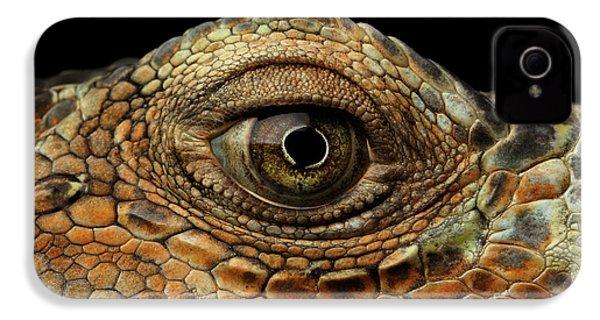 Closeup Eye Of Green Iguana, Looks Like A Dragon IPhone 4 / 4s Case by Sergey Taran