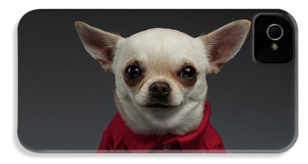 Closeup Portrait Chihuahua Dog In Stylish Clothes. Gray Background IPhone 4 / 4s Case by Sergey Taran