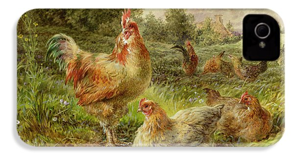 Cochin China Fowls IPhone 4 / 4s Case by George Hickin