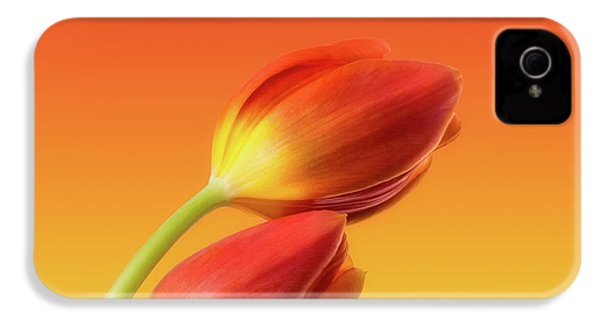 Colorful Tulips IPhone 4 / 4s Case by Wim Lanclus