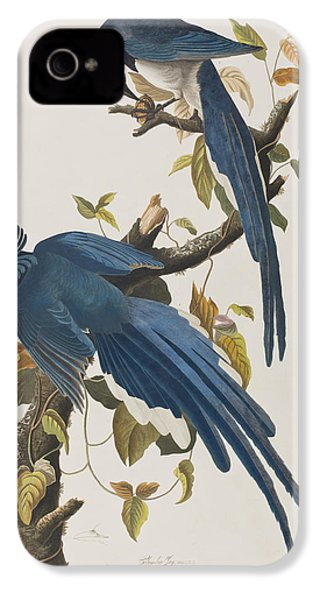 Columbia Jay IPhone 4 / 4s Case by John James Audubon