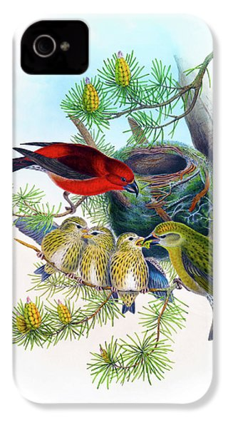 Common Crossbill Antique Bird Print John Gould Hc Richter Birds Of Great Britain  IPhone 4 / 4s Case by Orchard Arts