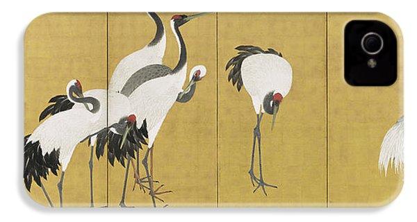 Cranes IPhone 4 / 4s Case by Maruyama Okyo
