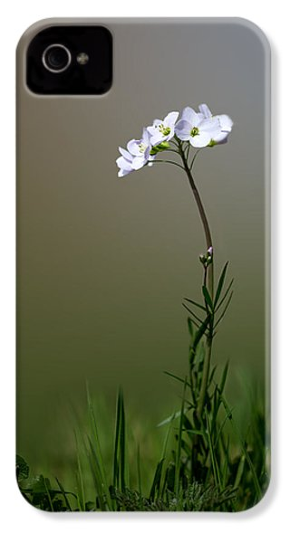 Cuckoo Flower IPhone 4 / 4s Case by Ian Hufton