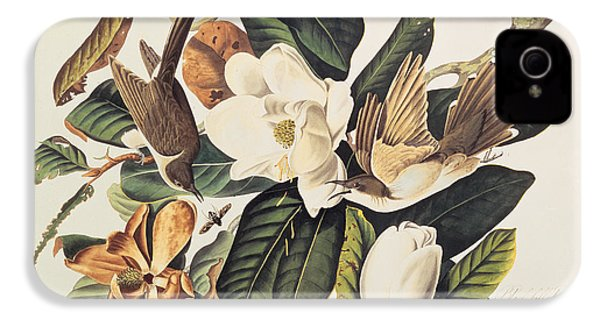 Cuckoo On Magnolia Grandiflora IPhone 4 / 4s Case by John James Audubon