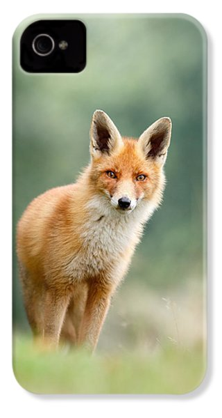 Curious Fox IPhone 4 / 4s Case by Roeselien Raimond