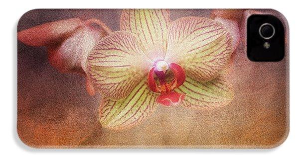 Cymbidium Orchid IPhone 4 / 4s Case by Tom Mc Nemar