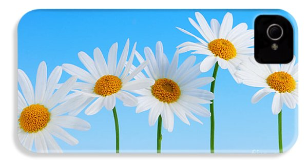 Daisy Flowers On Blue IPhone 4 / 4s Case by Elena Elisseeva