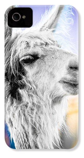 Dirtbag Llama IPhone 4 / 4s Case by TC Morgan