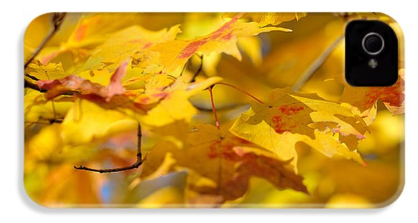 Fall Colors IPhone 4 / 4s Case by Sebastian Musial