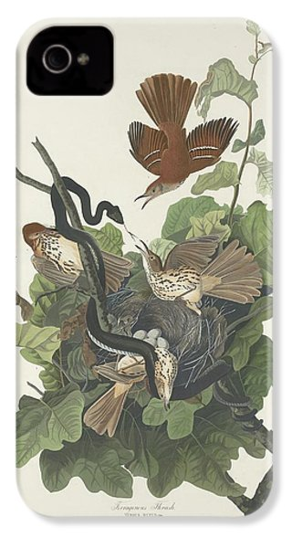 Ferruginous Thrush IPhone 4 / 4s Case by John James Audubon