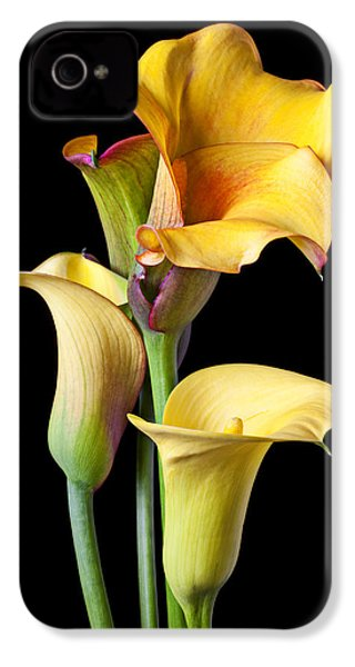 Four Calla Lilies IPhone 4 / 4s Case by Garry Gay