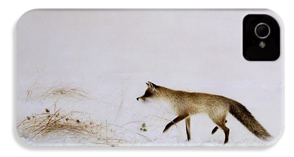 Fox In Snow IPhone 4 / 4s Case by Jane Neville
