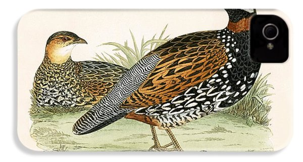 Francolin IPhone 4 / 4s Case by English School