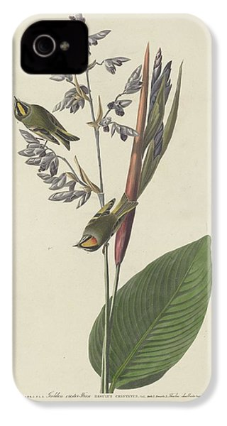 Golden-crested Wren IPhone 4 / 4s Case by John James Audubon