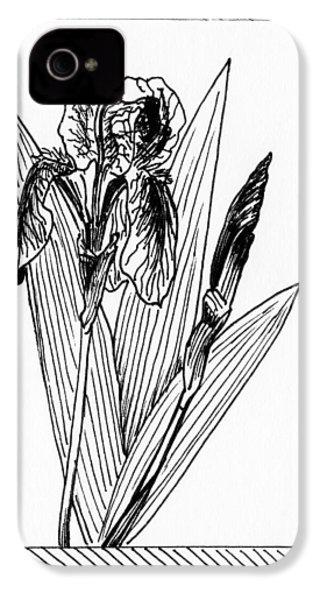 Graphic Iris IPhone 4 / 4s Case by Masha Batkova