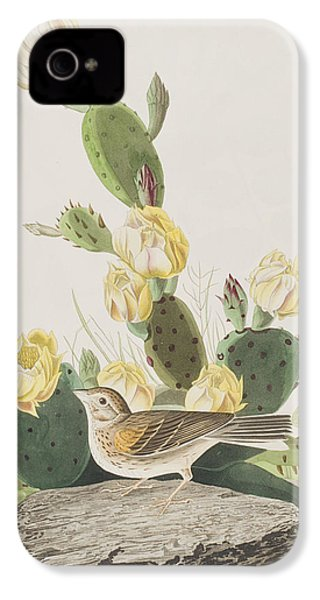 Grass Finch Or Bay Winged Bunting IPhone 4 / 4s Case by John James Audubon