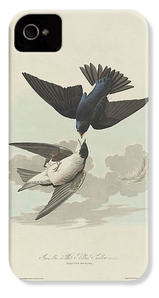 Green-blue Or White-bellied Swallow IPhone 4 / 4s Case by John James Audubon