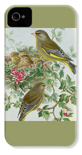 Greenfinch IPhone 4 / 4s Case by John Gould