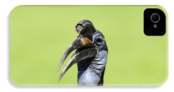 Ground Hornbill IPhone 4 / 4s Case by David & Micha Sheldon