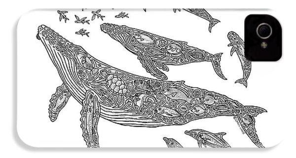 Hawaiian Humpbacks IPhone 4 / 4s Case by Carol Lynne