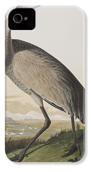Hooping Crane IPhone 4 / 4s Case by John James Audubon